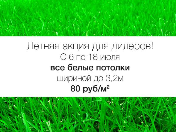 sale_summer
